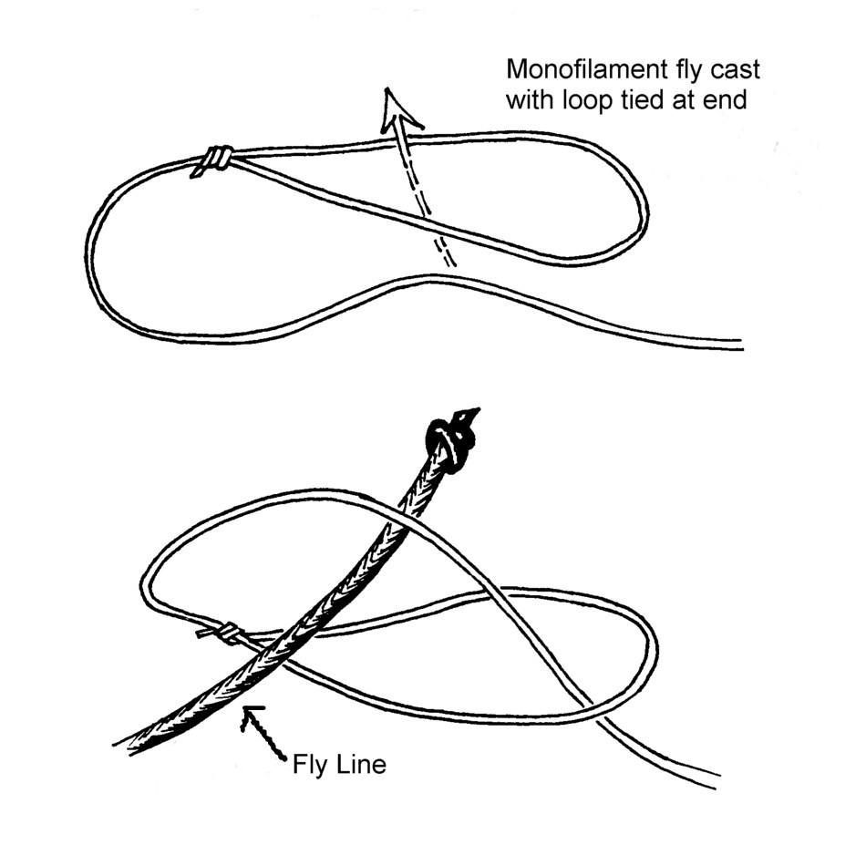 Loop knot to attach cast to main fly line